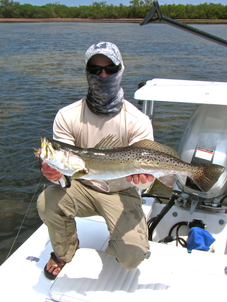 Mosquito Lagoon Trout