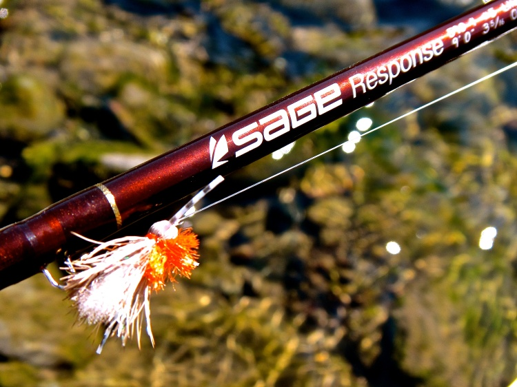 Sage Response 5wt 4 Piece