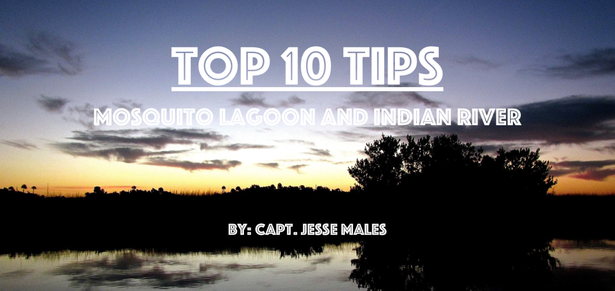 Top 10 Tips For Mosquito Lagoon And Indian River Backwater Fly Fishing