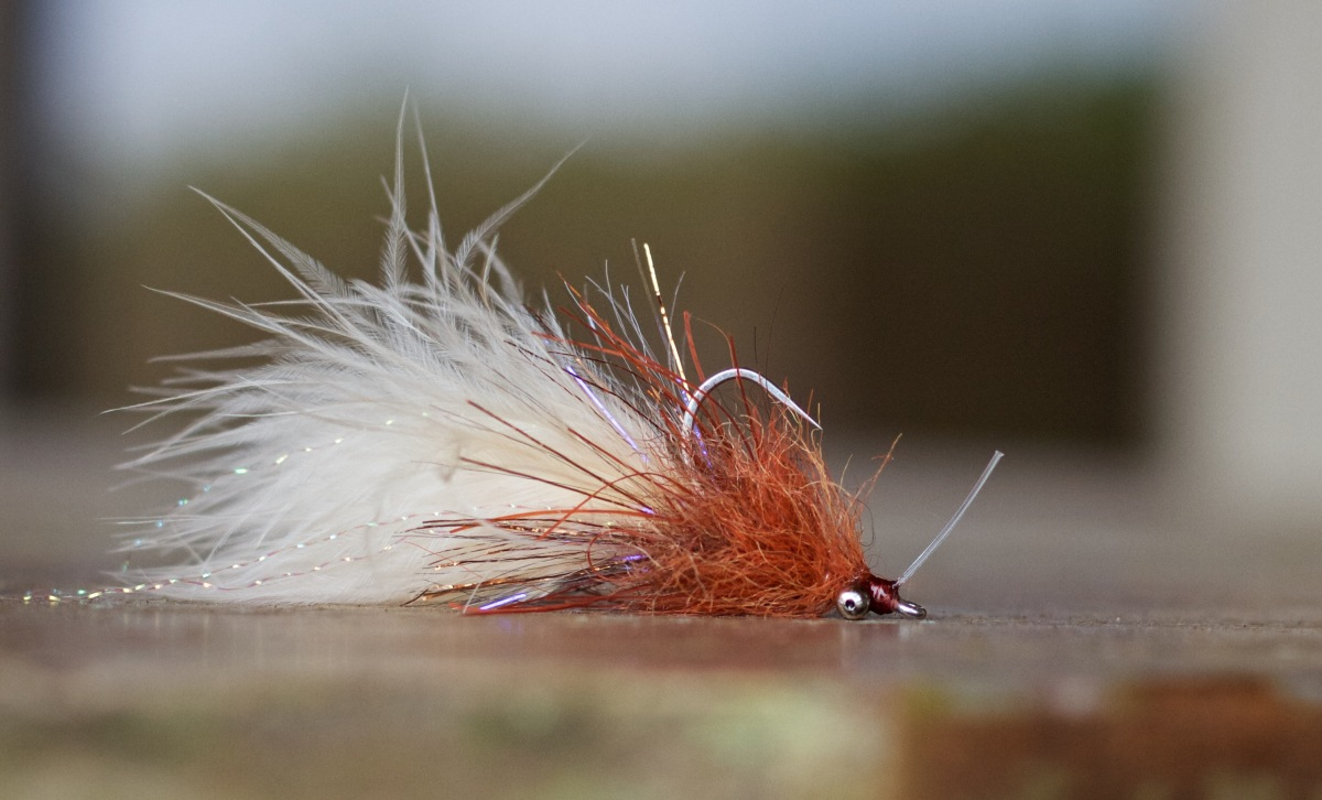 Hd Photo Fly Tying Tutorial Redfish L Amp D Backwater Fly