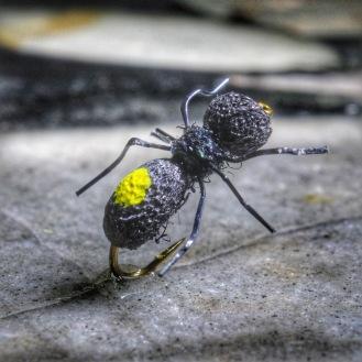 Adam's Ant
