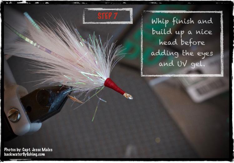 Tarpon Baitfish