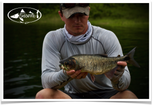 fly fishing machaca