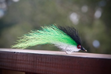 tarpon baitfish fly
