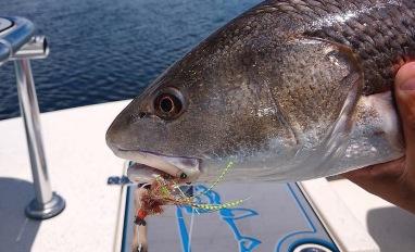 top redfish flies