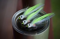 best baitfish flies