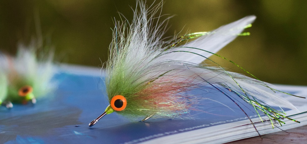 FOXY DECEIVER FLY