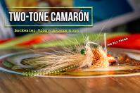 two tone camarón shrimp fly
