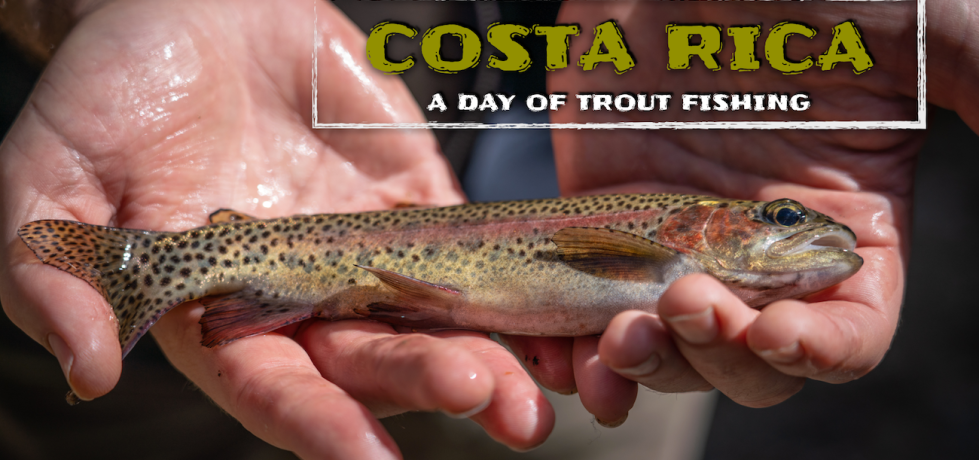 trout fishing costa rica