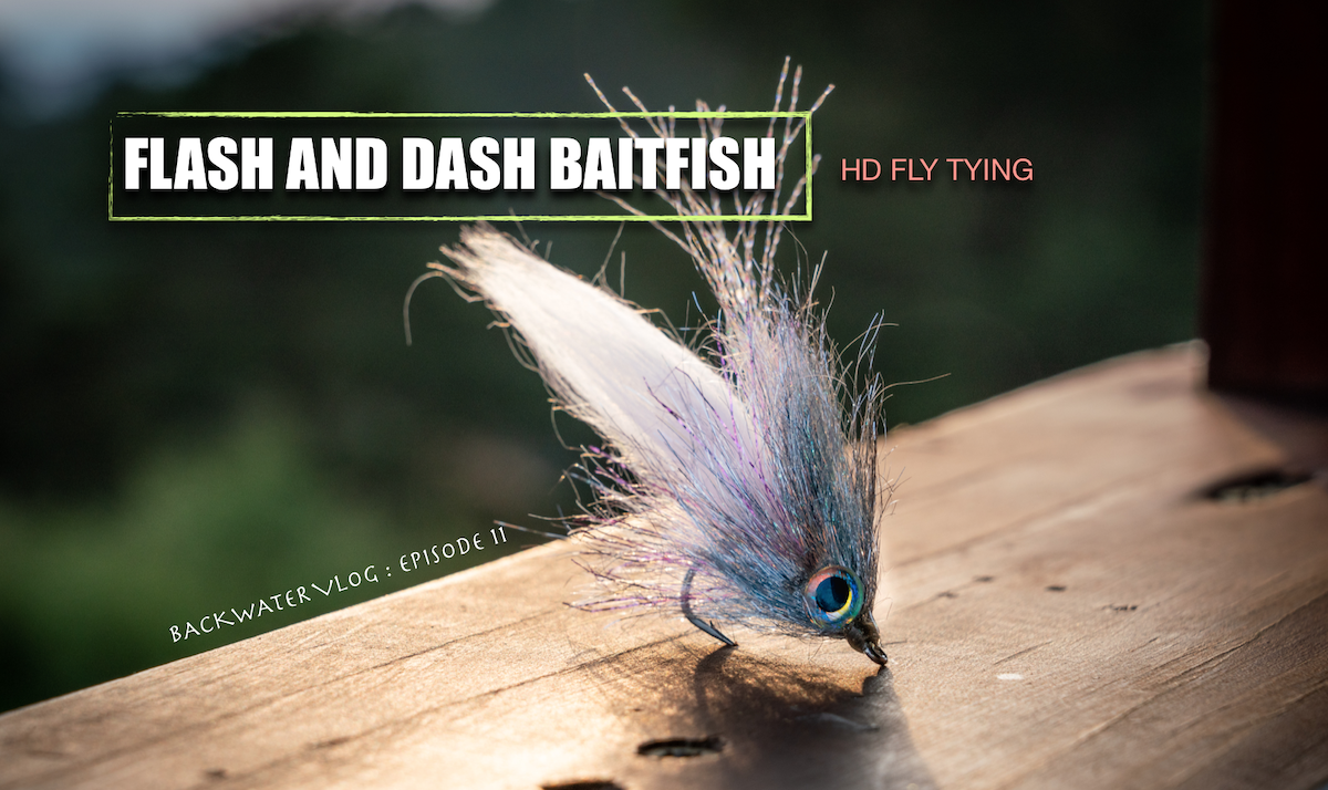 best baitfish fly tying video