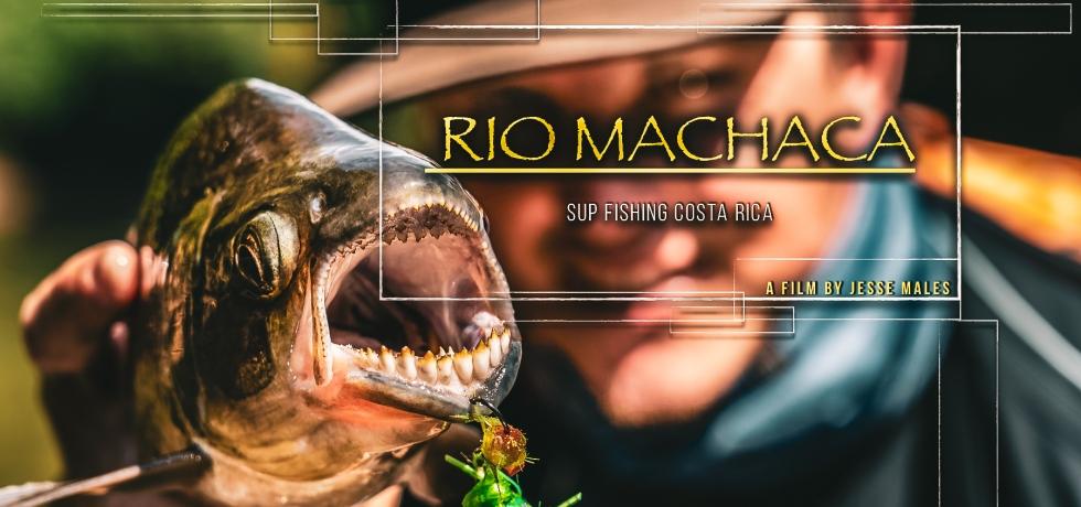 machaca fishing costa rica