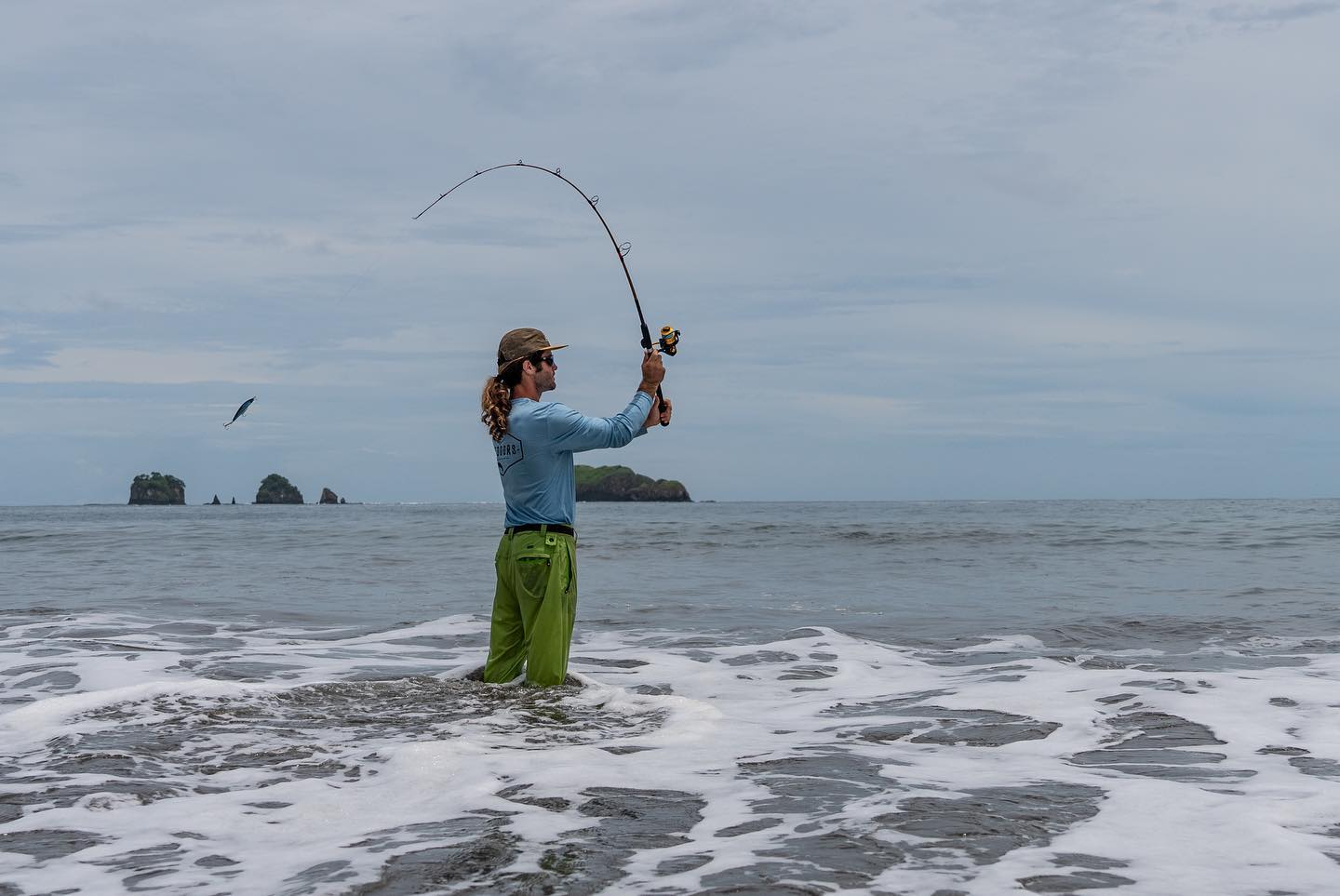 Roosterfish Costa Rica