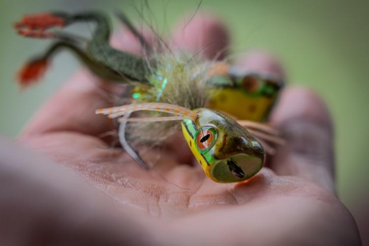 frog popper fly